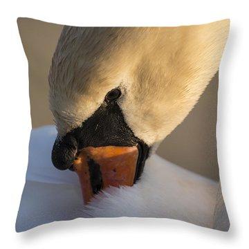 Swan Throw Pillow by Michael Mogensen