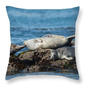 Phoca Vitulina Throw Pillows
