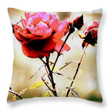 Throw Pillow featuring the photograph 40 Something by Faith Williams