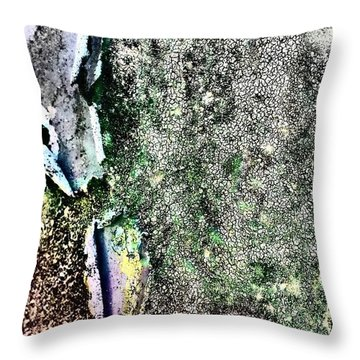 Textured 6 Throw Pillow