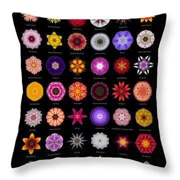 48 Flower Mandalas Throw Pillow