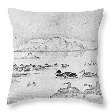 Blackburn Birds, 1895 Throw Pillow