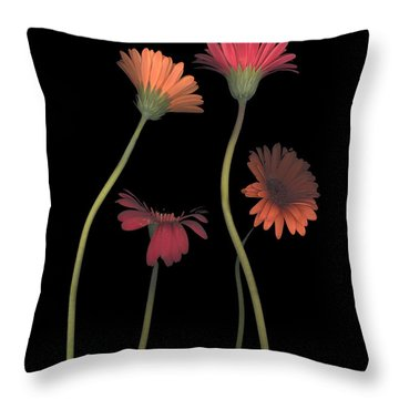 4daisies On Stems Throw Pillow by Heather Kirk