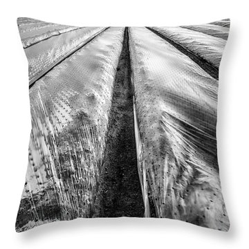 5-4-3 Throw Pillow by John Farnan