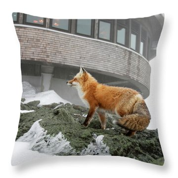 A Red Fox  On The Summit Of Mt Throw Pillow