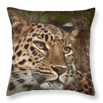Amur Leopard Throw Pillow