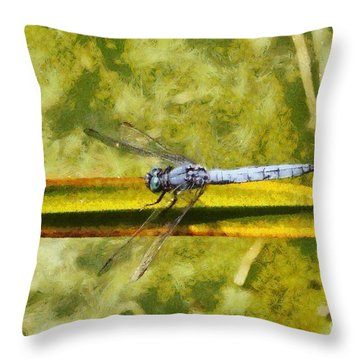 Dragonfly Throw Pillow by George Atsametakis