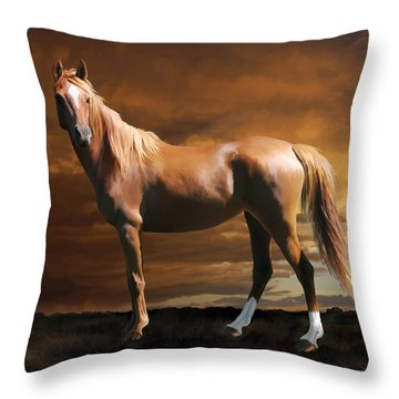 5. Fancy Throw Pillow
