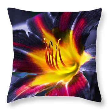 Flower Burst Throw Pillow by Gunter Nezhoda