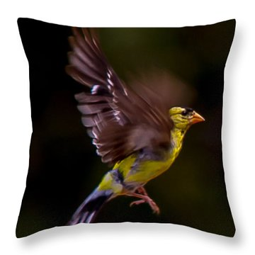 Gold Finch Throw Pillow by Brian Williamson