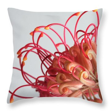 Grevillea Flower Throw Pillow by Shirley Mitchell