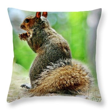 Harry The Squirrel Throw Pillow