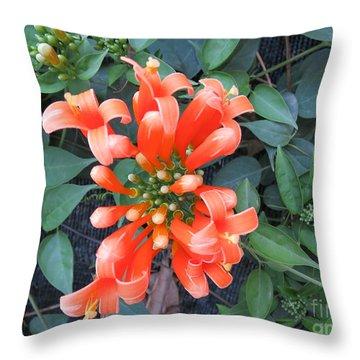 Micro Photography Throw Pillow