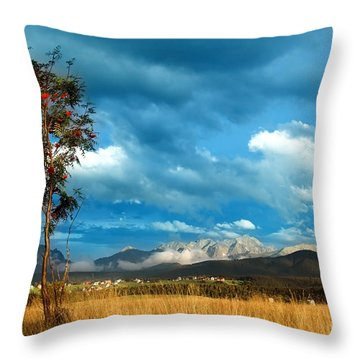 Mountains Landscape Throw Pillow by Michal Bednarek