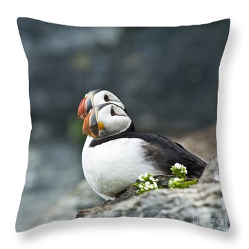 Puffins Throw Pillow by Heiko Koehrer-Wagner