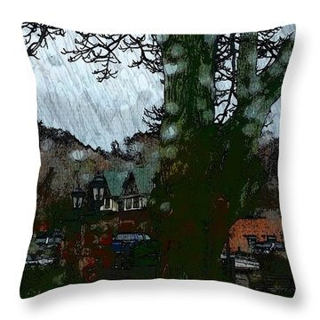 Throw Pillow featuring the photograph Rain Day by Rose Wang