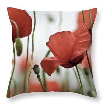 Wild Poppies Throw Pillows