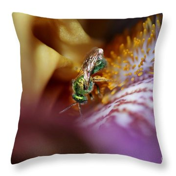 Tall Bearded Iris Named Final Episode Throw Pillow