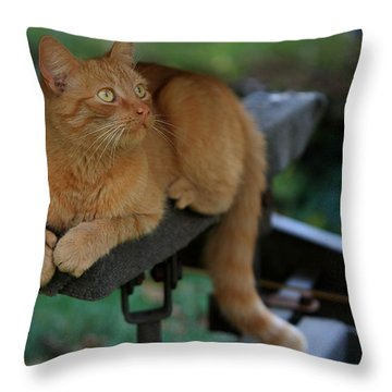 5-toe'd Orange Cat Of The Marina Throw Pillow