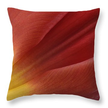 Tulip Throw Pillow by Mark Johnson