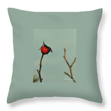 Winter  Impressions Throw Pillow