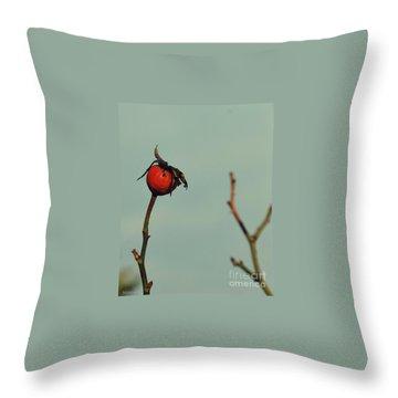 Winter  Impressions Throw Pillow by Marija Djedovic