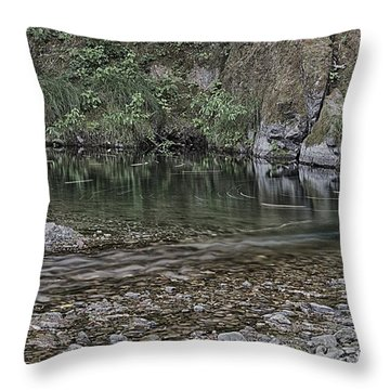 50 Throw Pillow by Betty Depee
