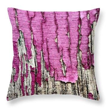 Flaky Paint 2 Throw Pillow