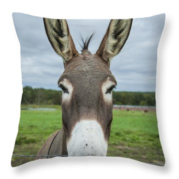 Animal Personalities Friendly Quirky Donkey Face Close Up Throw Pillow by Jani Bryson