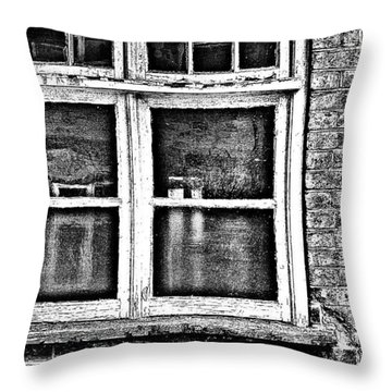 The Window Throw Pillow by Jason Michael Roust