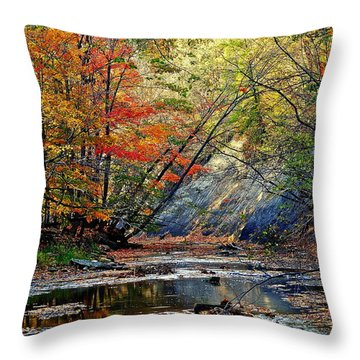 Autumn Stream Throw Pillow by Frozen in Time Fine Art Photography