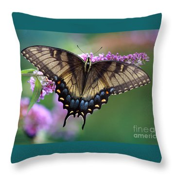 Eastern Tiger Swallowtail Butterfly On Butterfly Bush Throw Pillow