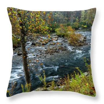 Fall Color Cherry River Throw Pillow
