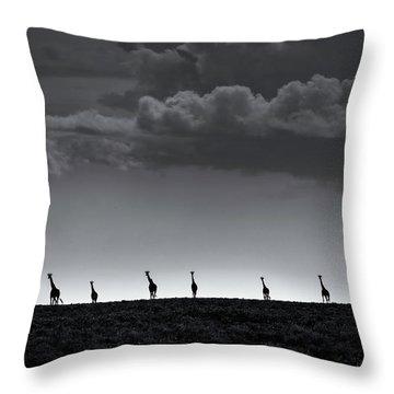 Savannah Throw Pillows