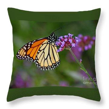 Monarch Butterfly In Garden Throw Pillow