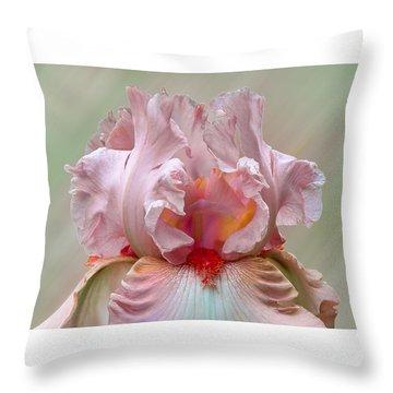 Pink Electrabrite Bearded Iris Throw Pillow
