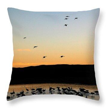 Sandhill Cranes Throw Pillow by Steven Ralser