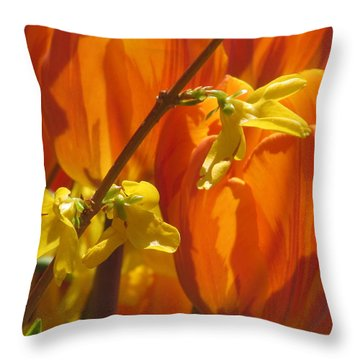 Spring Color Throw Pillow by Alfred Ng