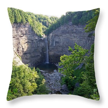 Tunkhannock Falls 1 Throw Pillow