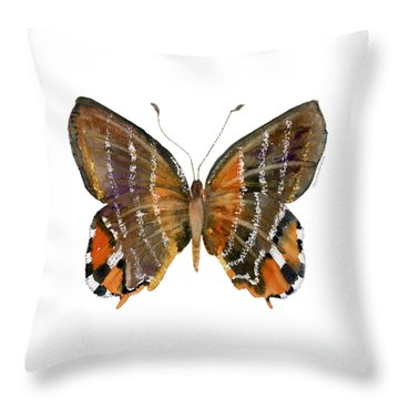 60 Euselasia Butterfly Throw Pillow