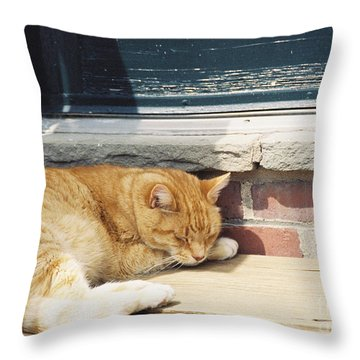 #665 03 Catnap  Throw Pillow by Robin Lee Mccarthy Photography