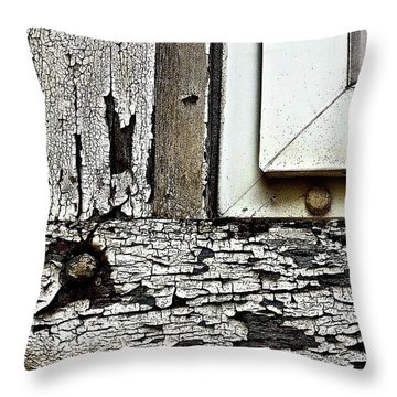 Window Frame Throw Pillow