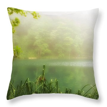 Beautiful Lake Throw Pillow