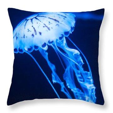 Jellyfish Square Throw Pillow