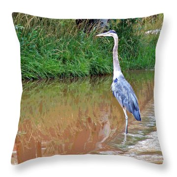 Blue Heron On The East Verde River Throw Pillow