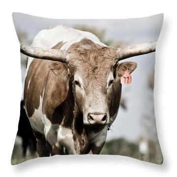 72 Throw Pillow by Swift Family