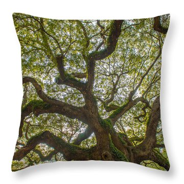 Island Angel Oak Tree Throw Pillow