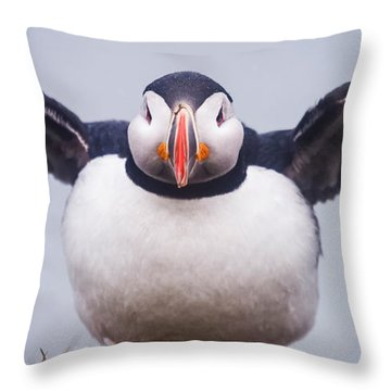 Atlantic Puffin Fratercula Arctica Throw Pillow by Panoramic Images