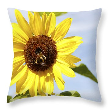 Bee On Flower Throw Pillow by Les Cunliffe
