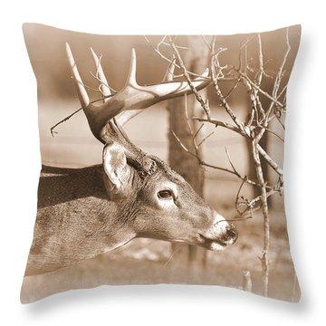 8 Pointer Throw Pillow